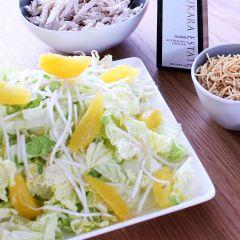 Orange Slaw Salad